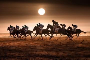 Horseracing at Sanlucar